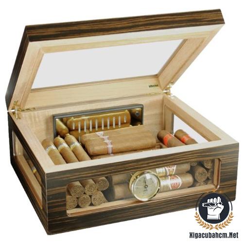 Hộp giữ ẩm xì gà Adorini Treviso Deluxe - xigacubahcm.net
